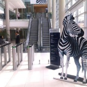Roll-up-Investec_2287