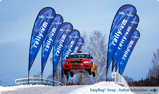 3_Rally_Easyflag-D